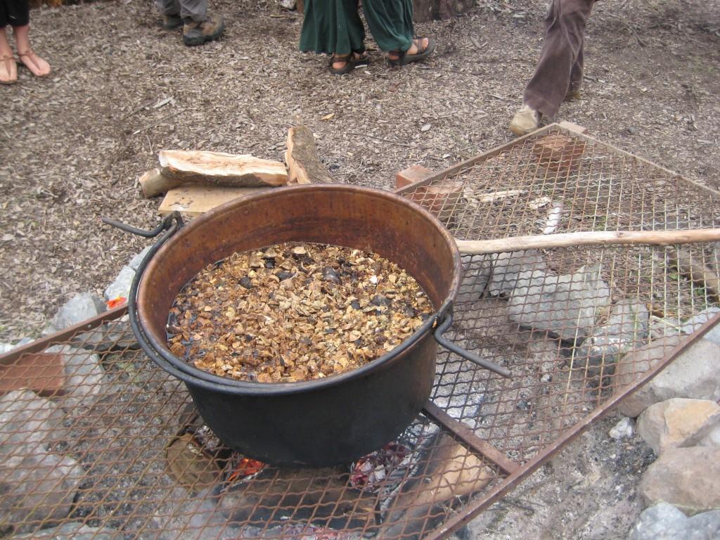 copper pot simmering oak galls